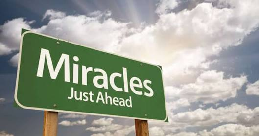 Miracles_Elly_McDonald_Writer
